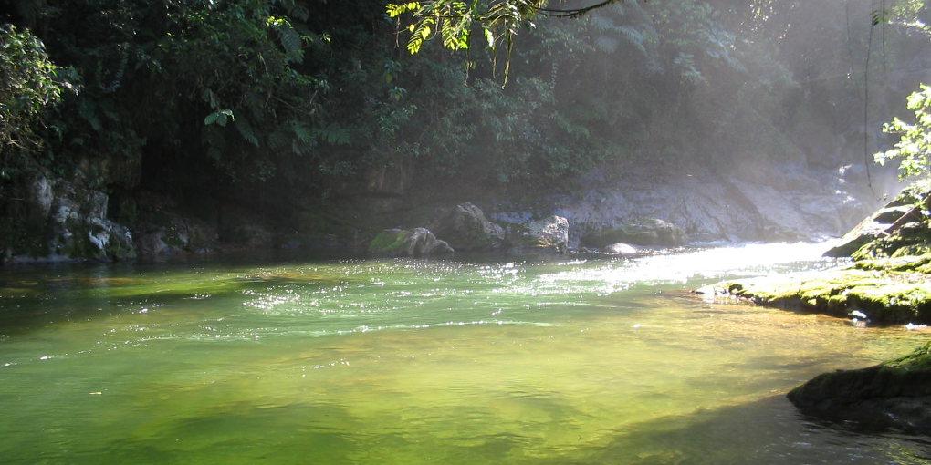 Parque Carlos Botelho